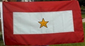 service_flag_gold_star_theis