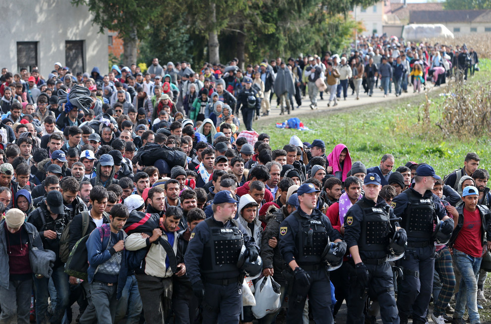 Image result for immigrant invasion germany