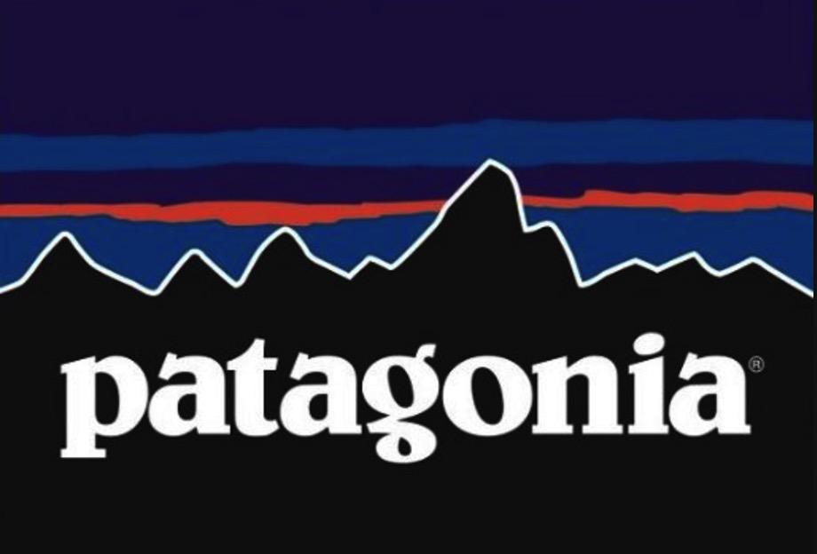 patagonia charity