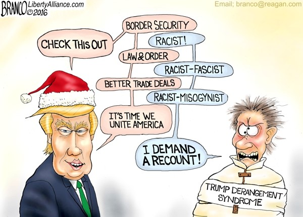 Image result for TRUMP DERANGEMENT SYNDROME!